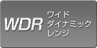 spec_icon_dr_wdr